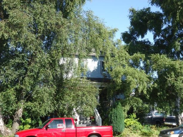 Schillingers Residence_2